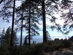 TahoeSideDay3 - 09